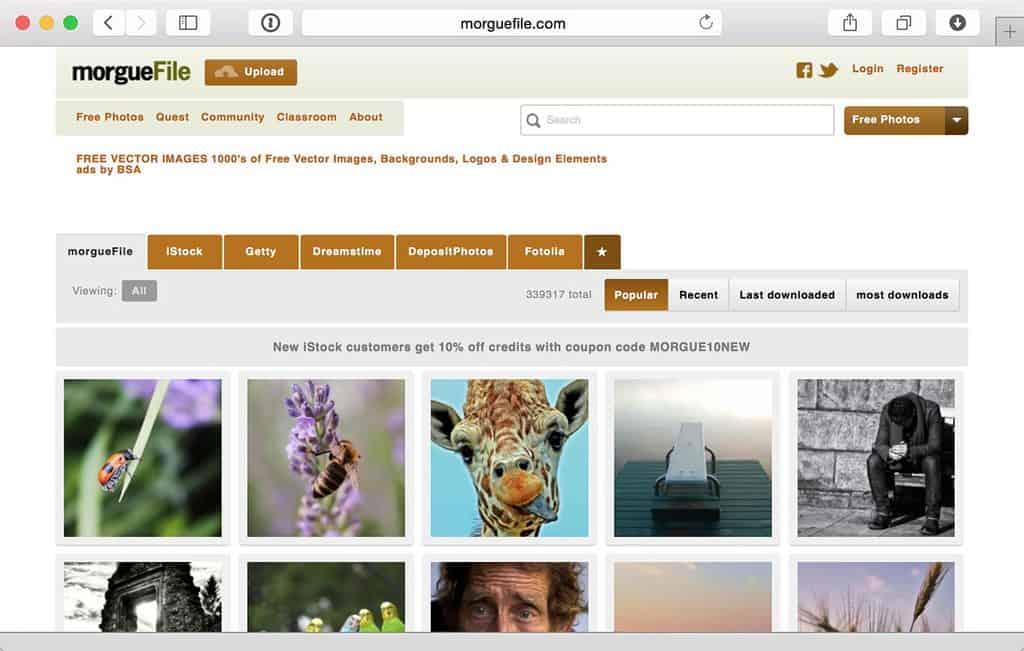 MorgueFile.com/archive