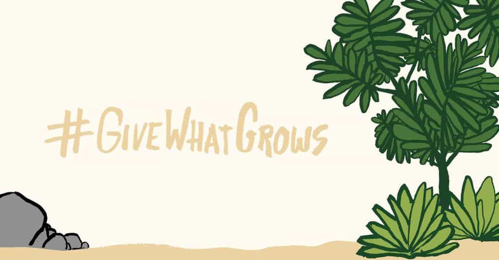 Give What Grows —How to Overcome Burnout (FS200)